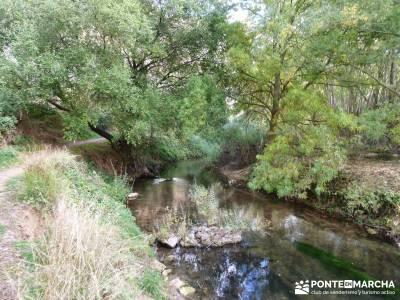 Hoces del Río Duratón - Sepúlveda;turismo aventura rutas senderos actividades de madrid